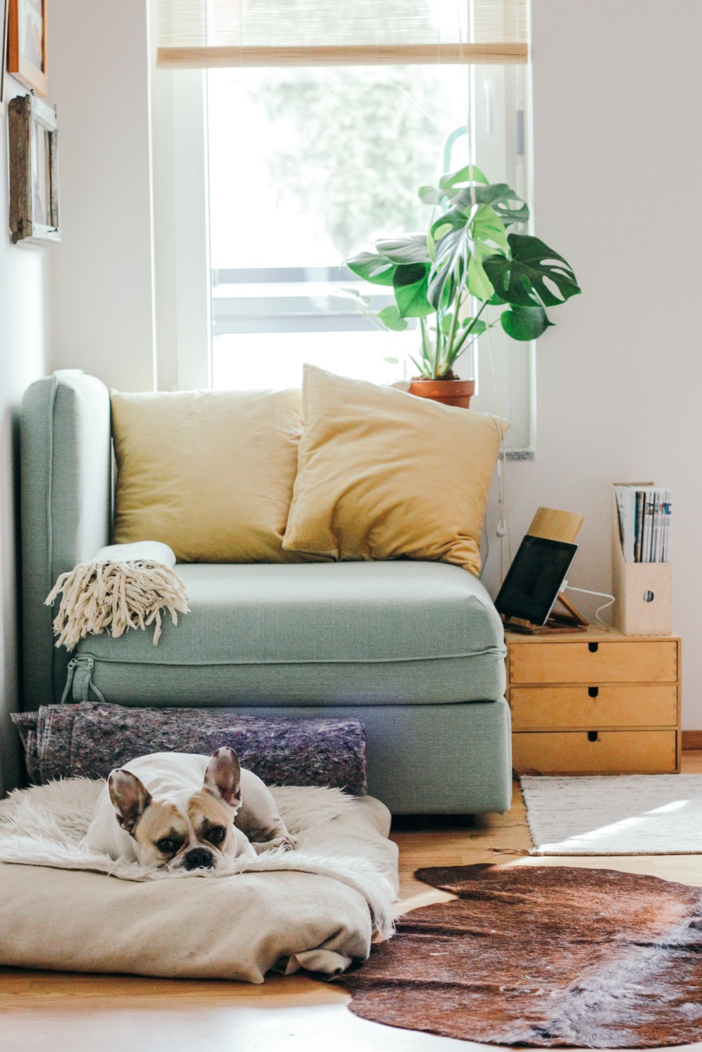 Loveseat Set And Couch Chair