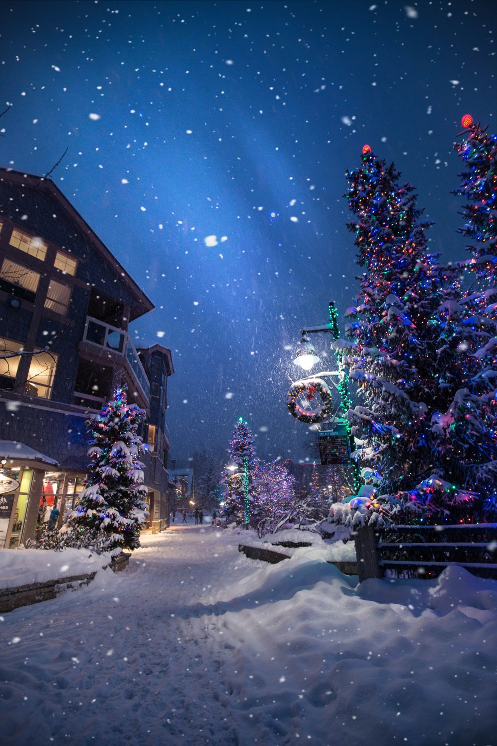 Christmas Pictures HD Download Free Images On Unsplash