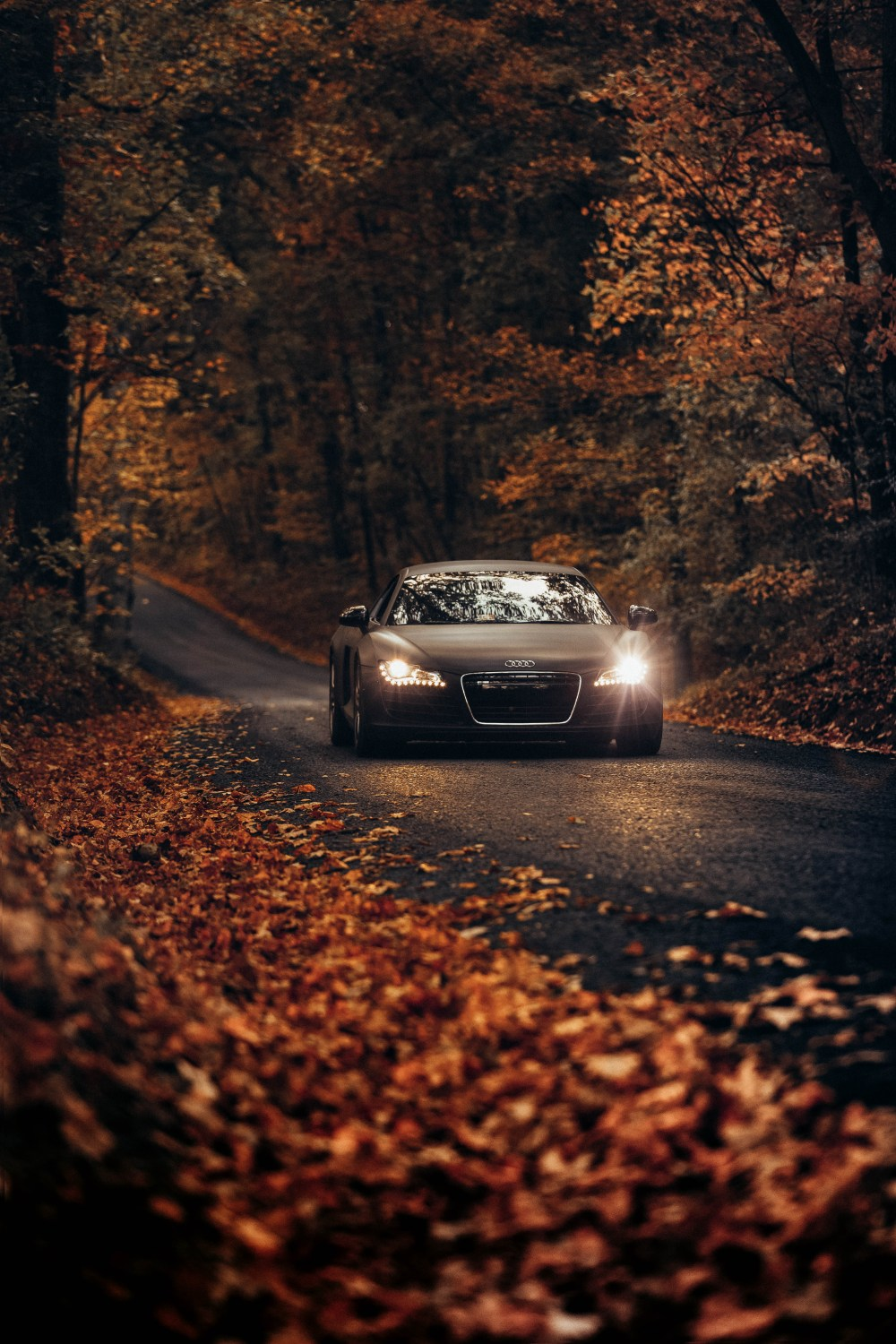 500 Audi Wallpapers Hd Download Free Images On Unsplash