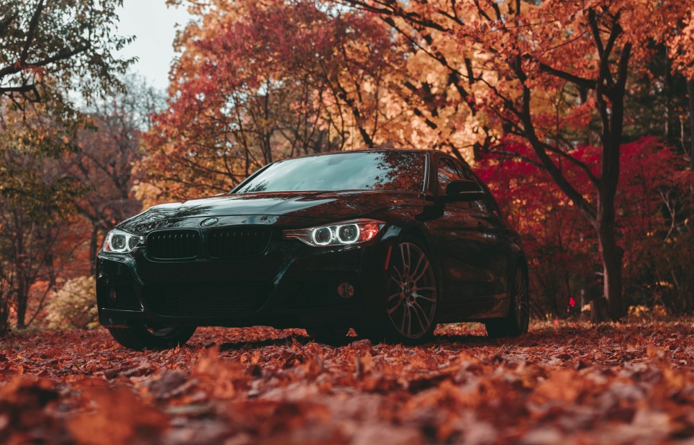 These simple tricks will help make your next wallpapering job go smoothly. Bmw Wallpapers Free Hd Download 500 Hq Unsplash