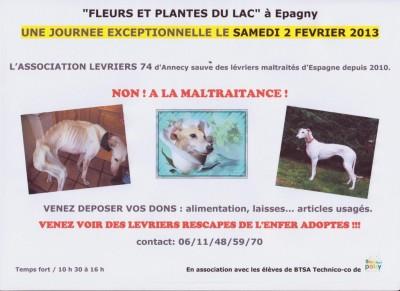 Journee Speciale Galgos A Fleurs Et Plantes Du Lac D Epagny