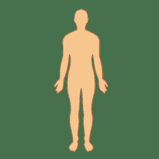 Human Body Man Transparent Png Svg Vector File