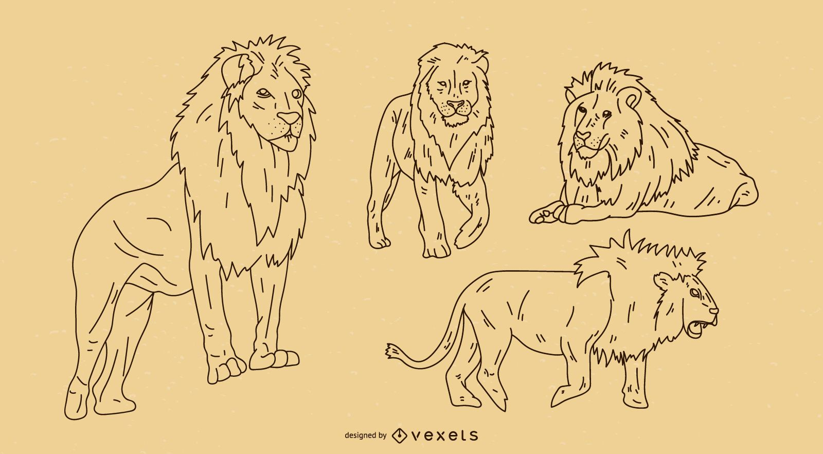 Lion Outline Set Vector Download