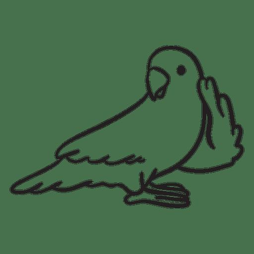 Cute Parrot Listening Outline Transparent Png Svg Vector File