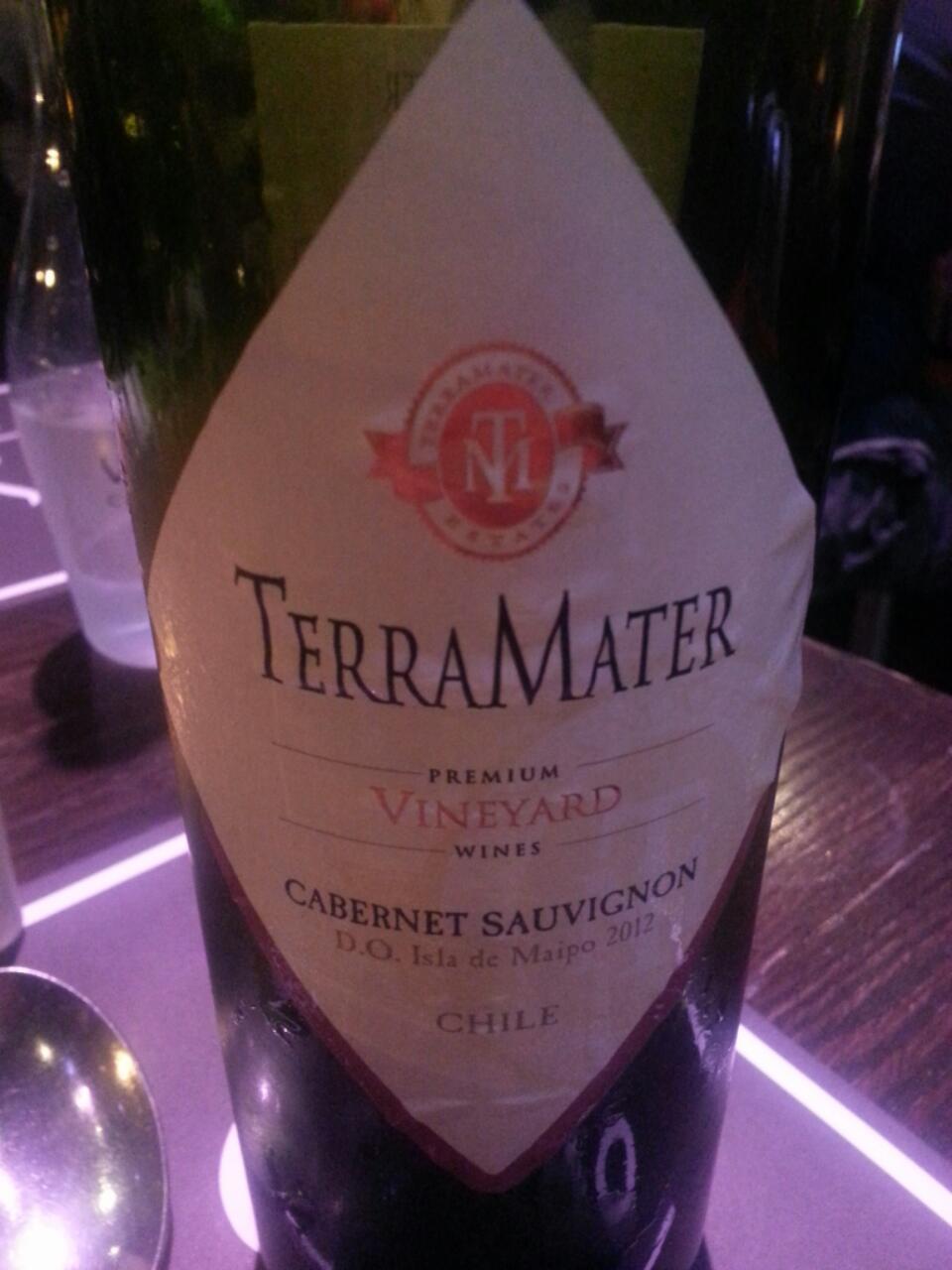 Terra Mater Premium Maipo Valley Cabernet Sauvignon 2007