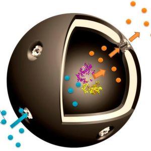 Schematische Darstellung der Nano-Kapsel: Die Ausgangssubstanz Glukose-1-phosphat (blau) gelangt durch Poren zum eingekapselten Enzym Phosphoglucomutase, mit dem es reagiert. Das gewünschte Produkt Glukose-6-phosphat (orange) tritt durch die Pore wieder aus. (Ausschnitt)
