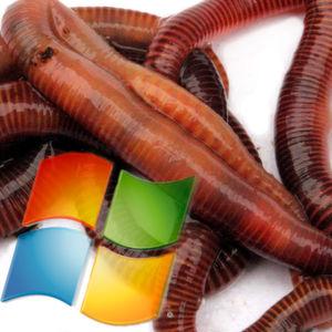 Wurmkur für Windows XP bis Server 2008