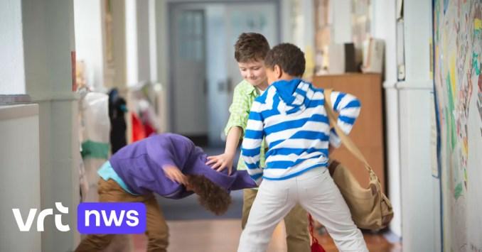 In het hoofd van de pestkop: waarom kinderen elkaar pesten en wat we daaraan kunnen doen