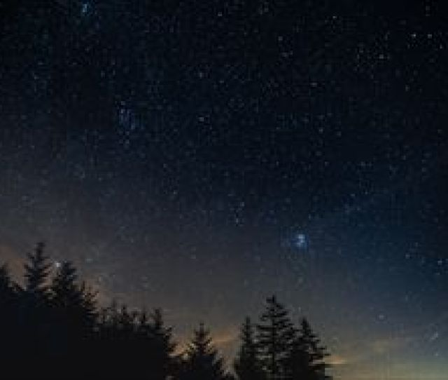 Preview Wallpaper Starry Sky Night Trees Night Landscape