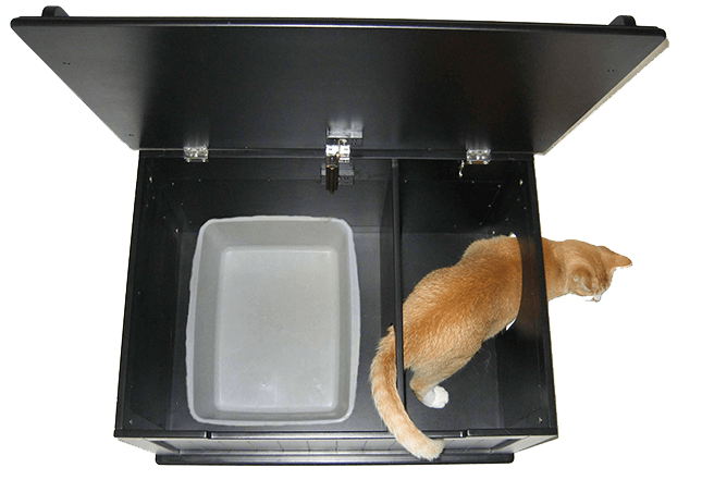 Designer Catbox The Ultimate Cat Toilet