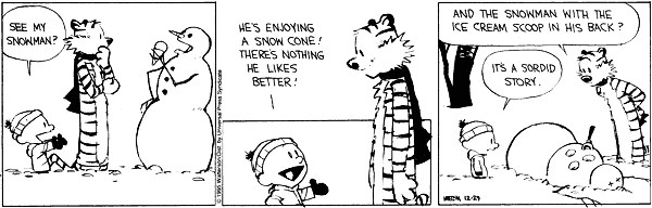comic by Bill Watterson