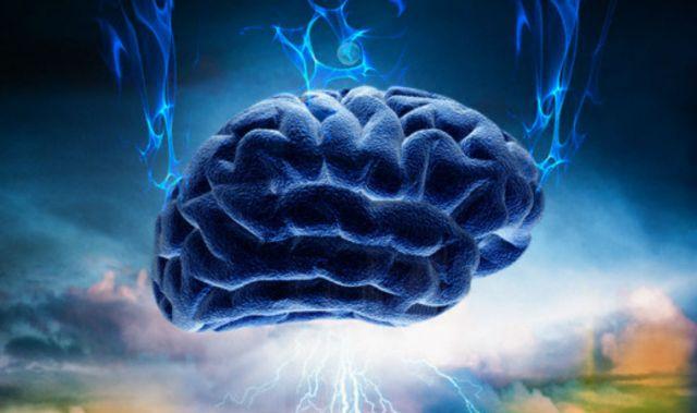 Risultati immagini per cervello