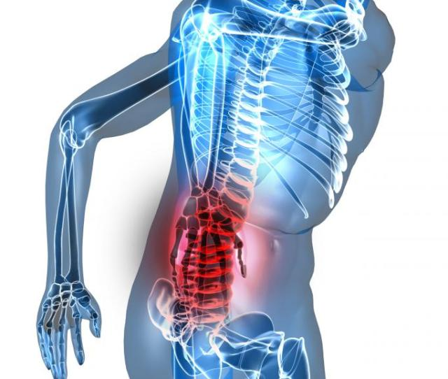 The Human Body With The Area Primarily Affected By Lower Back Pain Shown In Red