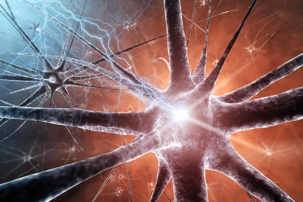 http://www.wisegeek.com/what-factors-affect-the-release-of-neurotransmitters.htm