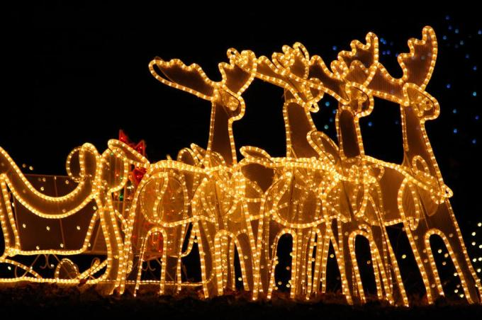 what are diffe types of christmas lights with pictures