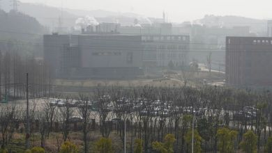 U.S. Report Found It Plausible Covid-19 Leaked From Wuhan Lab