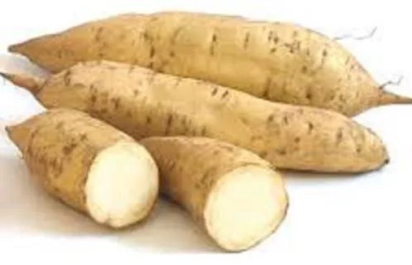 Image result for sweet potatoes nigeria