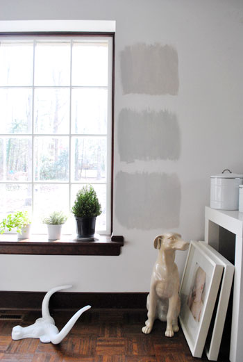 three Benjamin Moore gray paint options painted as test squares on a white wall with wood trim