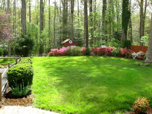 final-backyard-after
