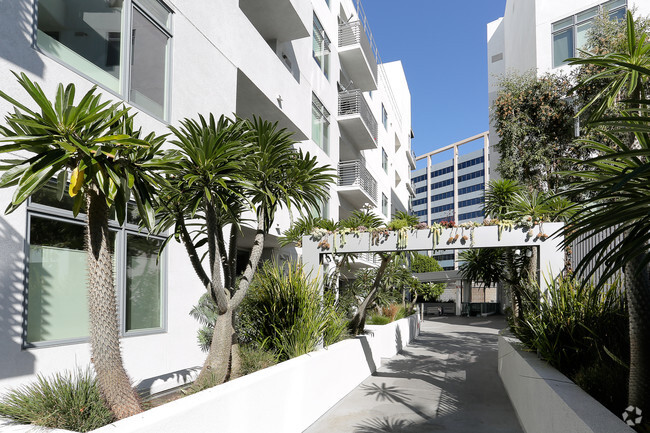 Hollywood Hills Apartments For Los Angeles Ca