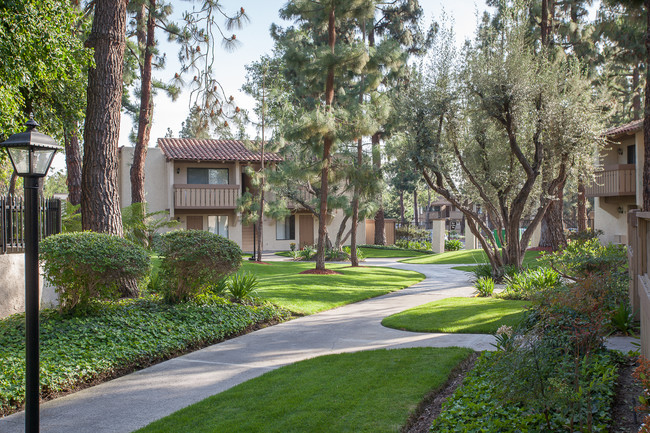 Professional Landscaping The Homestead