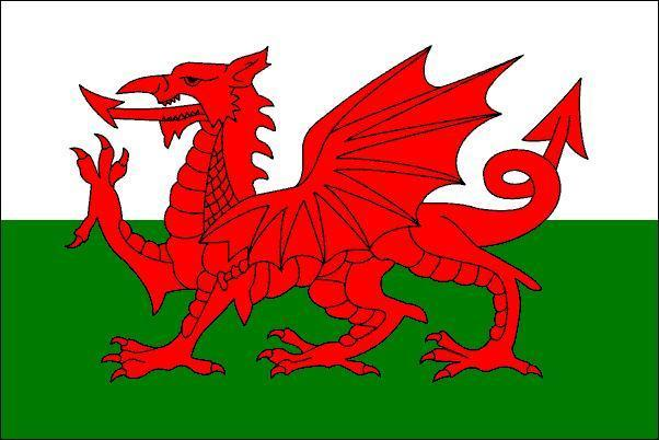 https://i1.wp.com/images1.fanpop.com/images/photos/1900000/Welsh-Flag-wales-1974164-602-402.jpg
