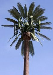 cell-phone-palm-tree-250x250