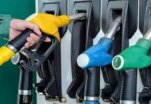Petrol Price Today: Petrol-Diesel will be cheap or will the price keep increasing?  Important meeting of the Parliament Standing Committee today