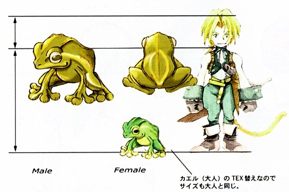 Frog Catching The Final Fantasy Wiki 10 Years Of