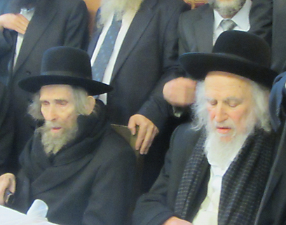 Rabbis Shteinman (L) and Auerbach. 'Jews are being murdered here too' (Archive photo: Kikar Hashabat)