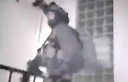 В момент ликвидации террористов, похитивших 3 подростков. Фото: пресс-служба полиции