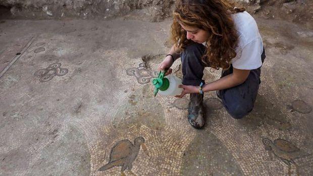 Мозаика. Фото: Асаф Перец, Управление древностей