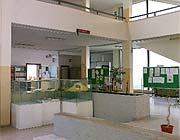 L'Istituto professionale di Brindisi