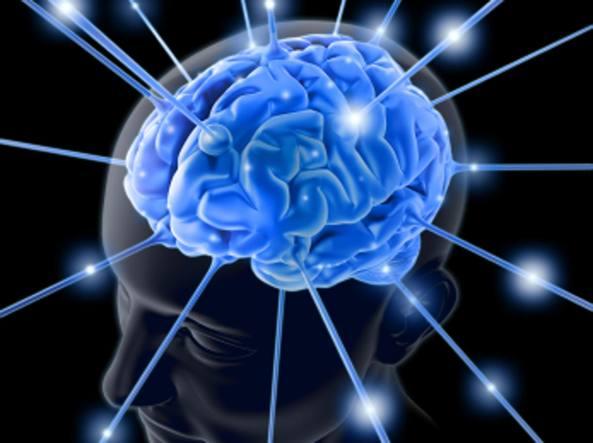 Risultati immagini per foto del cervello