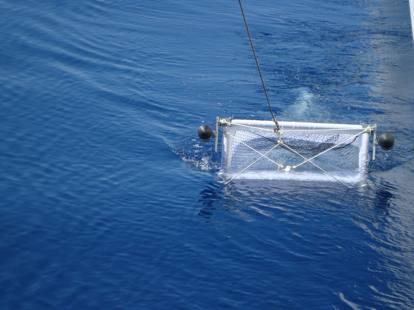 Plastica: il Mediterraneo ormai è una «zuppa»