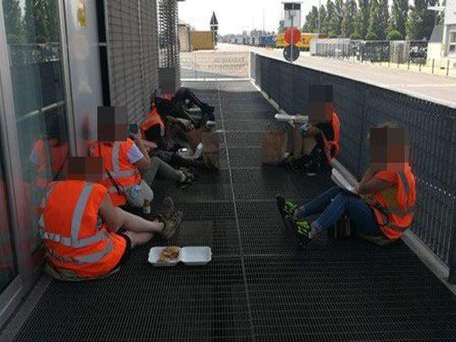 Ikea, i dipendenti senza Green pass pranzano  all'esterno seduti per terra