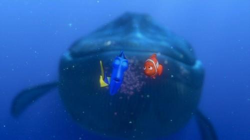 Finding Nemo 2003 Disney Screencaps