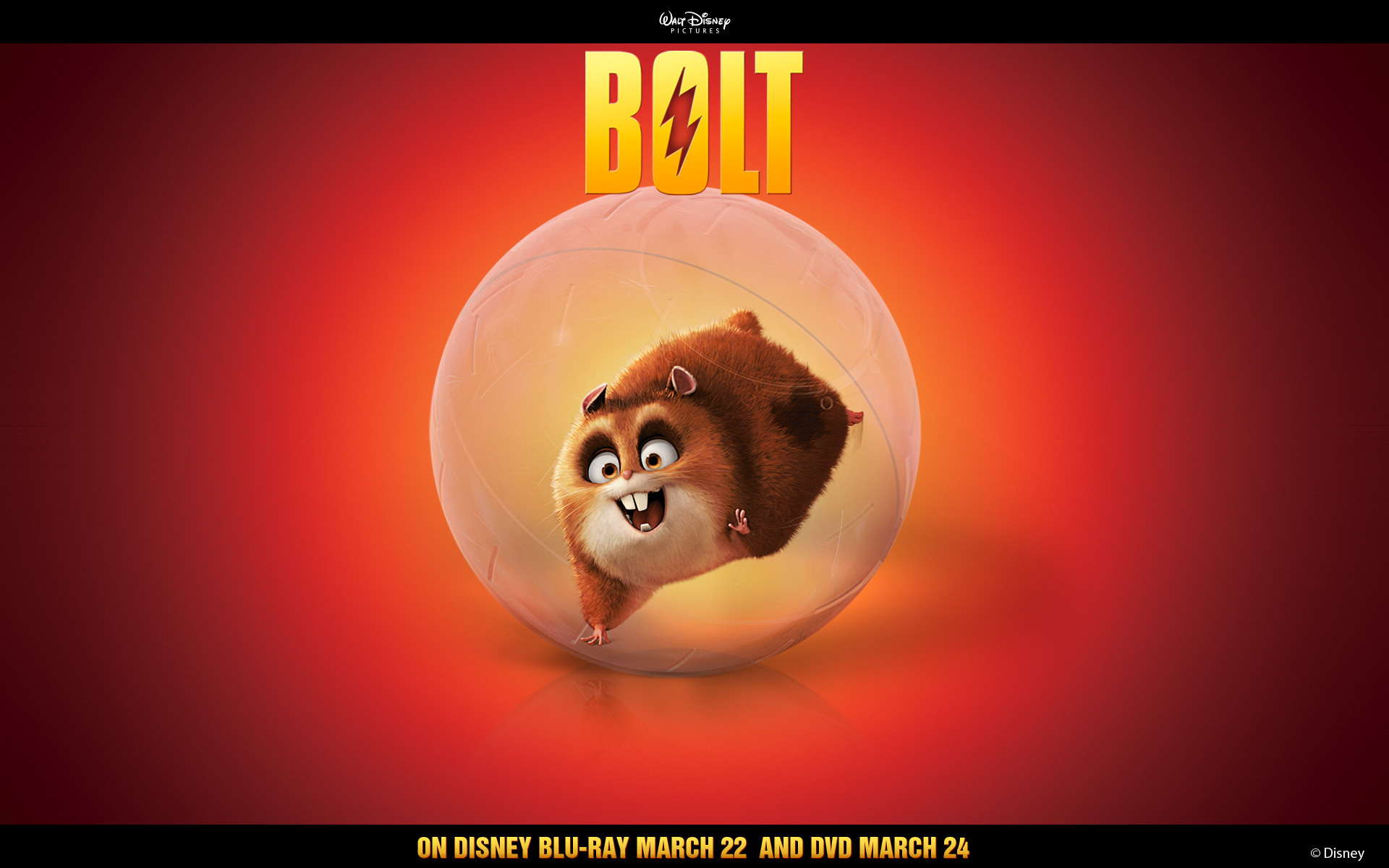 Rhino Solo Wallpaper - Disney's Bolt 1920x1200