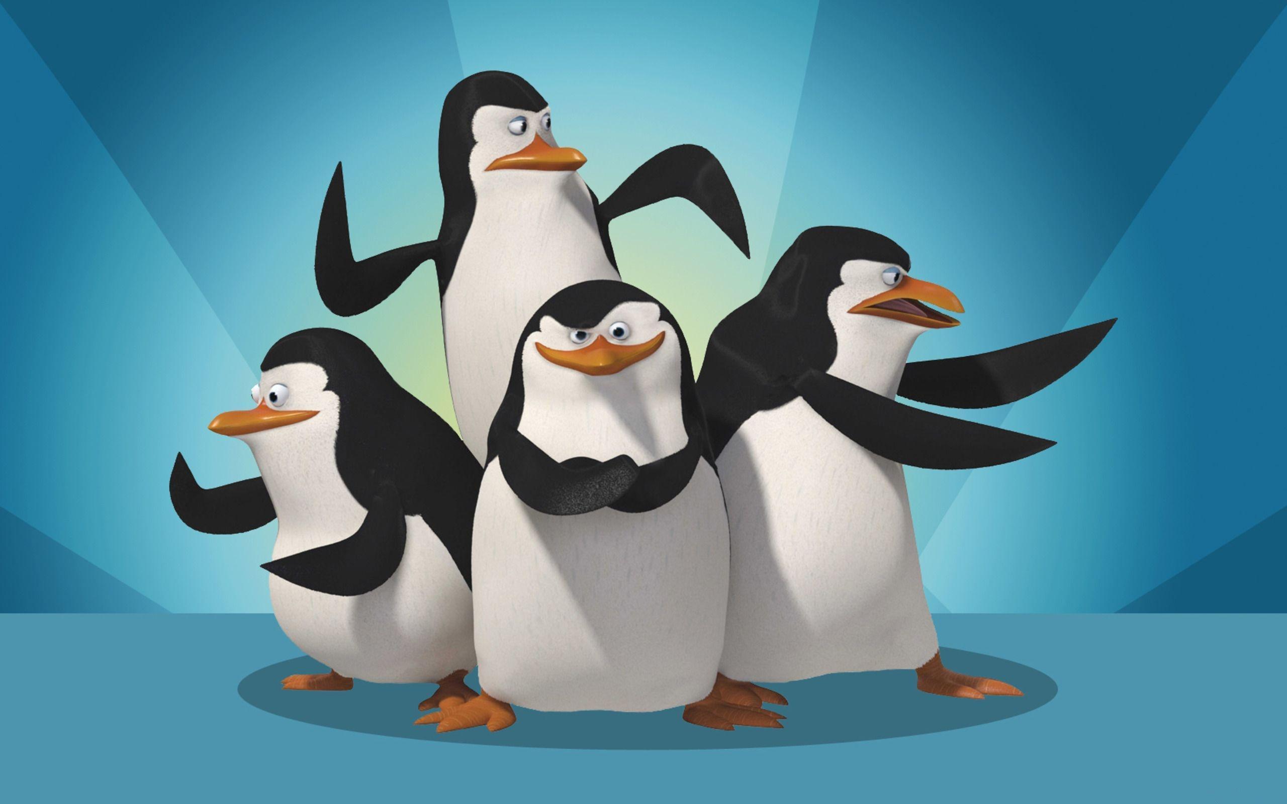 penguins of madagascar images penguins of madagascar wallpaper hd