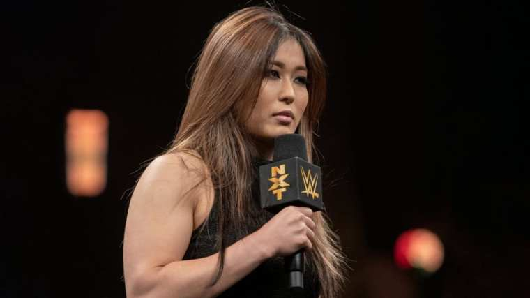 The Top 5 Wrestlers Of The Year In NXT