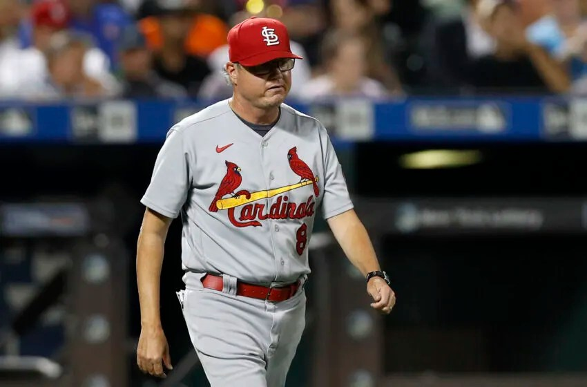 NEW YORK, NEW YORK - SEPTEMBER 14: Manager Mike Shildt #8 of the St. Louis Cardinals in action against the New York Mets at Citi Field on September 14, 2021 in New York City. The Cardinals defeated the Mets 7-6 in eleven innings. (Photo by Jim McIsaac/Getty Images)