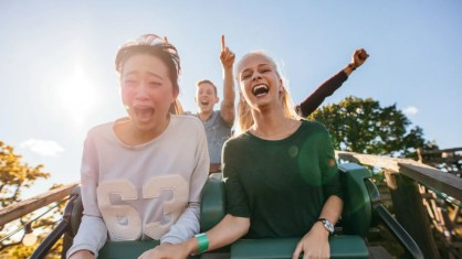 Image result for roller coaster arms up happy face