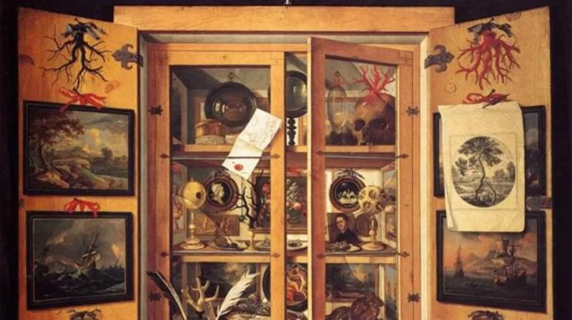 Image result for curiosity cabinet