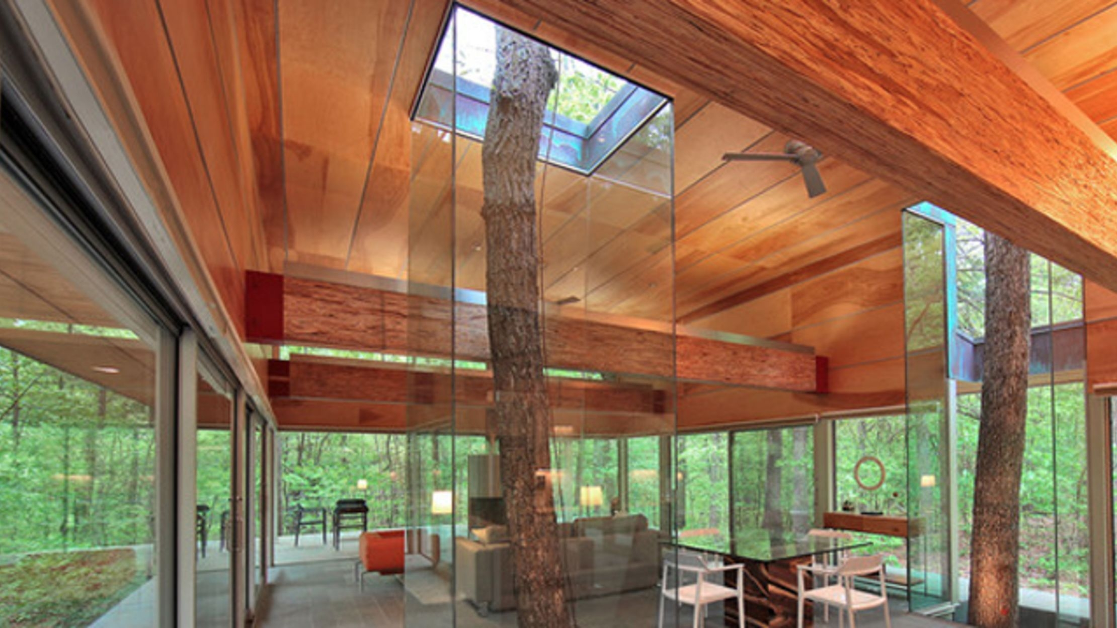 10 Houses Built Around Trees Mental Floss   Spiral Staircase Around Tree Trunk   Treehouse Masters   Ter Kulve   Canopystair   Robert Mcintyre   Wooden Stairs