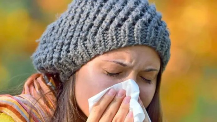 The irritation in the nose is accentuated in the presence of allergies