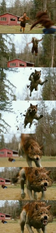 Jacob Black transformation