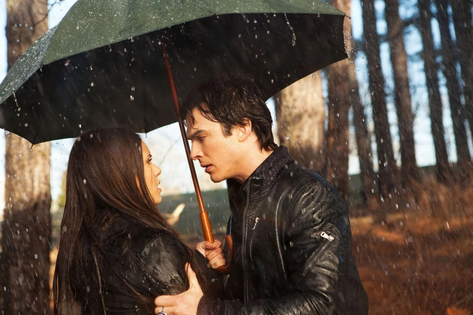 Vampire Diaries, Damon, Elena Gilbert, Salvatore, Damon and Elena
