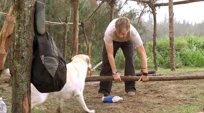 Charlie is tested by a dog