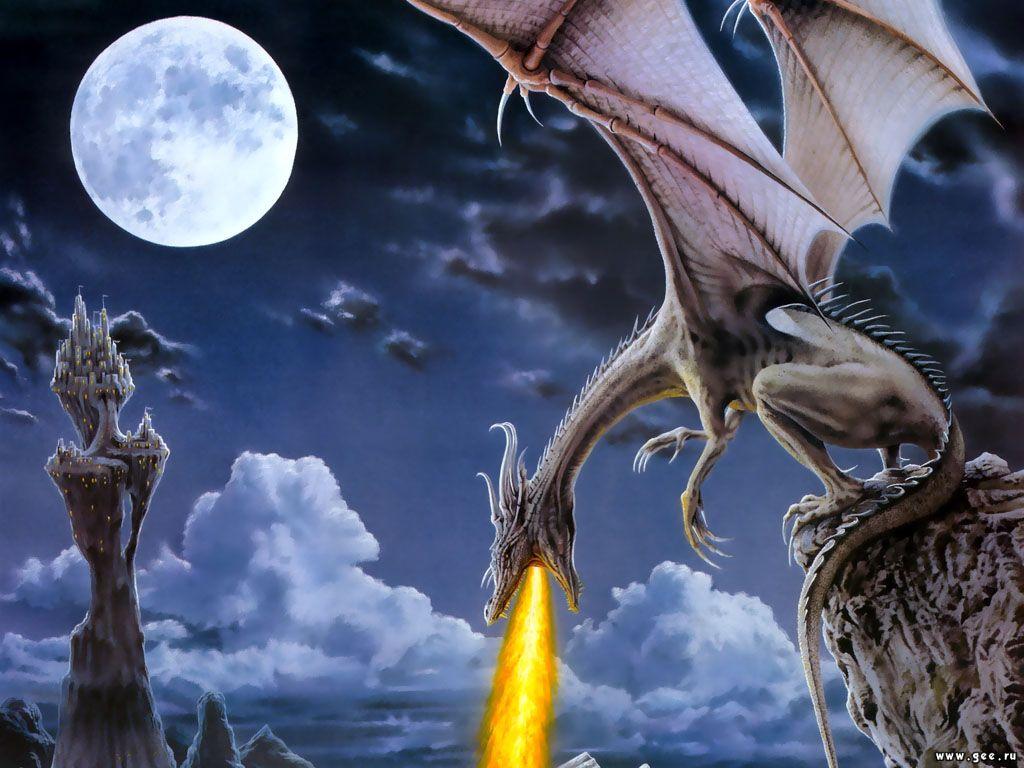 Art Dragons Fan Dragon Imagine