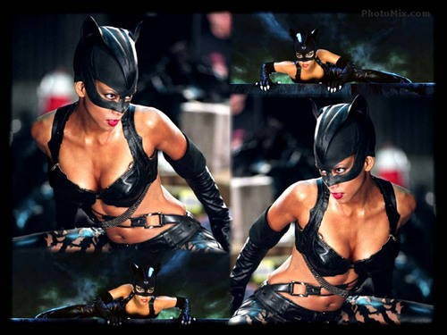 Catwoman The Movie - catwoman-the-movie Wallpaper